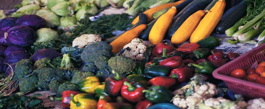 ページ画像 京野菜の高級レストラン - 京野菜の高級レストラン